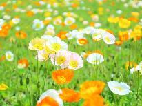 【花摘み特典♪】早春先取り!菜の花料理を1品プレゼント☆スタンダードプラン【1泊2食付き】