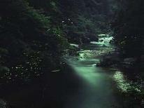 【期間限定☆得得☆】幻想的なホタル観賞とツルツルお肌効果の湯谷温泉♪