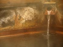 【期間限定◆お得】 今だけ10%割引!【ー1080円OFF】檜風呂の湯宿◇源泉かけ流し《1泊2食》