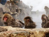【冬季限定】 渋温泉で温まってスノーモンキーを見に行こう♪シャトルバス乗場まで徒歩5分 《1泊2食》