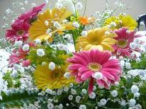 【カップル様】 お二人の恋物語 【大人の隠れ宿】 可愛いお花&ケーキ・・・ 11特典付