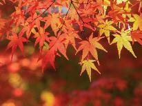 【紅葉旅】トレッキング・写真etc…秋の日光・中禅寺湖は綺麗ですよ☆★☆[1泊2食]