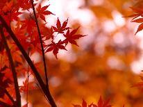 【秋の戸隠☆紅葉スポット】《便利な特典付》 『鏡池の紅葉』『戸隠森林自然園』を満喫♪【2食付】