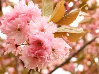 南会津の春を満喫♪花見スポット巡り*夕食は手作り田舎料理♪1泊2食付き