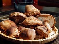 【期間限定】秩父産 原木しいたけのアミ焼き付き♪肉厚な旬の味を堪能できる。。季節限定プラン