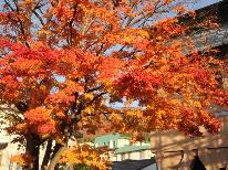 【秋の優雅旅】ロングステイ+手作りお土産付♪が1人1,000円引き!!竹屋一押し☆プラン