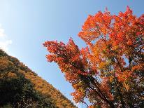 【秋の味覚】紅葉ときのこ料理を満喫!浅間の秋満喫プラン♪【1泊2食付】