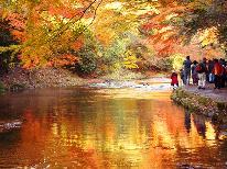 【紅葉の養老渓谷】房総一の名瀑布「粟又の滝」と黒湯☆秋満喫プラン