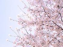 【春の訪れ】限定企画♪人気のスタンダードプランに地酒飲み比べを無料で付けちゃいます♪