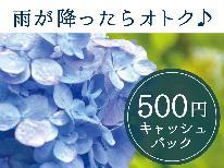 【雨が降ったらオトク♪】チェックイン時に雨が降っていたら500円キャッシュバック♪