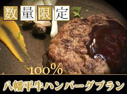 【数量限定】●八幡平牛100%使用●厳選部位ハンバーグ