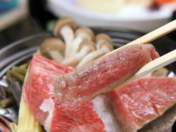 【個室食◆1日1組のみ】オフィシャルHP限定★食べ応え抜群!!貴重な鳳来牛を100gステーキで堪能♪【1泊2食付】