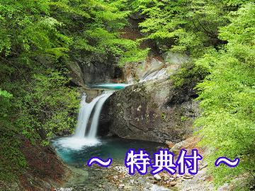 新緑の季節!トレッキング・登山を応援~甲州の旬を堪能&四種の貸切源泉風呂~【2大特典付】