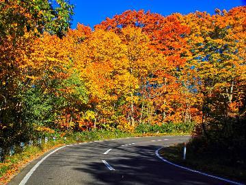 【期間限定】秋の出羽三山・鳥海山を巡ろう♪紅葉とパワースポットを満喫の旅[1泊2食]