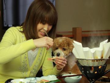 【1日4組限定】日本海の獲れたて食材を喰らう!☆朝食も個室で☆