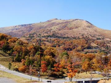 【OMM JAPAN 2019 (山岳マラソンレース)応援プラン】■□1泊2食付■□