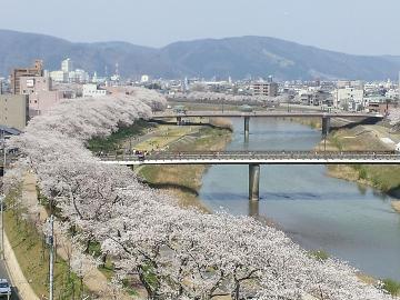 ★★ふくい桜でお花見、おでかけ満喫・2食付プラン★★