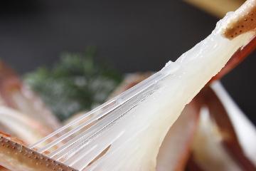 【超目玉!いけすの中の蟹食べ切り!】無くなったらおしまい!早い者勝ち浜坂産タグ付き活ガニプラン☆彡