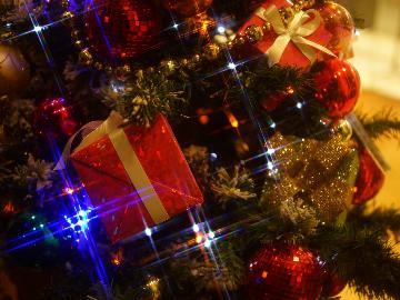 《12/23~25限定》温泉リゾートで過ごすXmas☆日帰りDinner plan☆和洋コラボの特別フルコース