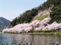 【お花見クルーズチケット付プラン!】リーズナブルVer.屋形船で海津大崎の桜を見ながら優雅に♪!