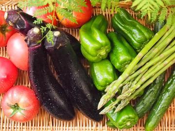 【7月限定】夏の朝採れ野菜フェア!栄養満点☆フレッシュな緑黄色野菜たっぷりのごちそう♪[1泊2食]